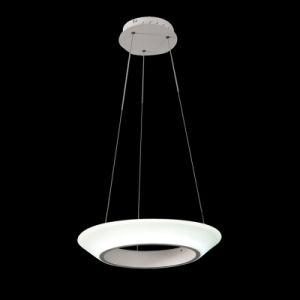 LED Pendant Lamp, Modern Pendant Light, LED Lighting (HS30058D)