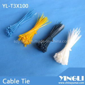 Widely Used Nylon Cable Tie in 100mm (YL-T3X100) pictures & photos