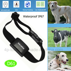 2017 Brand New GPS Tracker Device for Pet D61 pictures & photos