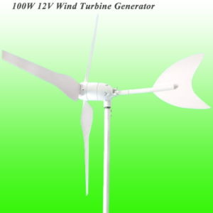 100W Wind Generator, Wind Hybrid Controller for Gardon Light pictures & photos