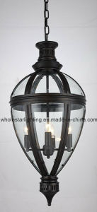 Metal Chandelier with Glass Shade (WHG-8172) pictures & photos
