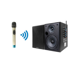 Professional Wireless Handheld Microphone and Black Speaker System pictures & photos