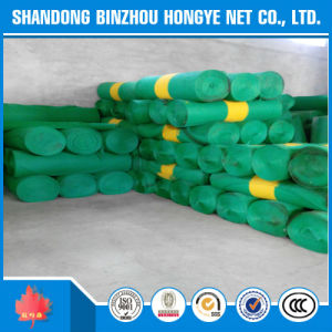 2*50m HDPE Scaffolding Construction Safety Net/ Green Construction Safety Net pictures & photos