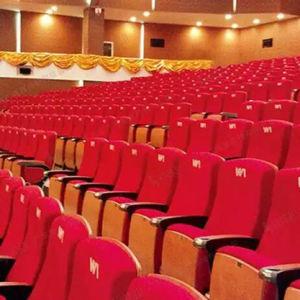 Cinema Chair, Auditorium Chair, Lecture Theatre Chairs, Auditorium Seat, Auditorium Seating (R-6150) pictures & photos