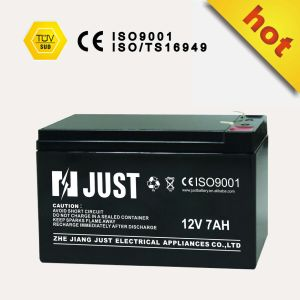 12V 80ah AGM Car Start -Stop Battery pictures & photos