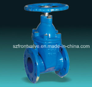 BS5163 Ductile Iron Resilient Seated Non Rising Stem Gate Valve pictures & photos