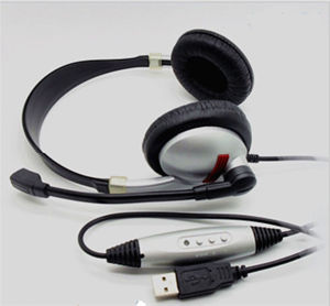 Earphones and Headphonesusb Noise Cancelling Handsfree Sport with pictures & photos