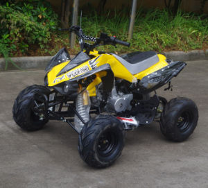 Jinyi 4 Wheels 110cc ATV for Cheap Selling (JY-100-1A) pictures & photos