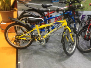 Factory Offer Kids Bike with Basket (HC-81-2) pictures & photos