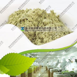 Manufacturer 80~200 Mesh Dehydrated Celery Powder pictures & photos