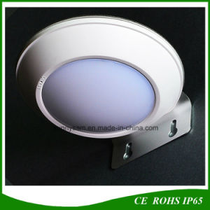 IP65 260lm LED Landscape Lamp Radar Motion Sensor Solar Garden Light pictures & photos