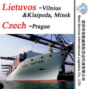 """Sea Transportation to Prague (Czech) ; Vilnius, Klaipeda, Minsk (Lietuvos) -20""""/40"""" pictures & photos"""