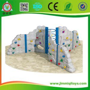 Rock Climbing Wall (JMQ-J131G)