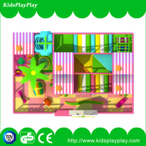 Custom Newest Commercial Plastic Various Indoor Playground with Low Price pictures & photos