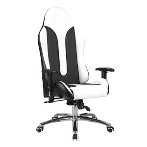 High Quality Lift Faux Leather Executive Racing Office Chair (FS-8807) pictures & photos