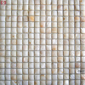 New Design Building Material Shell Mosaic Wall Tile (CB07) pictures & photos