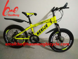 2017new Model Mountain Bicycle with Damping pictures & photos