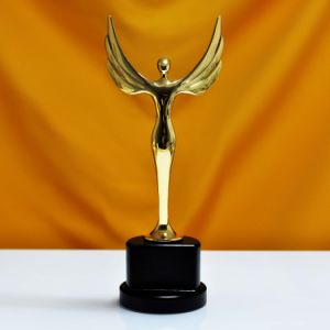 Oscar Sports Event Crystal Trophies Awards Customized Logo Words Champions Cup Trophy pictures & photos