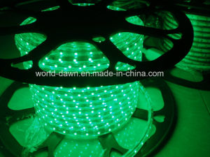 Ce EMC LVD RoHS Two Years Warranty 220V LED Rope Light pictures & photos