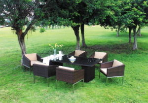 Outdoor Dining Furniture/ Dining Room Furniture pictures & photos