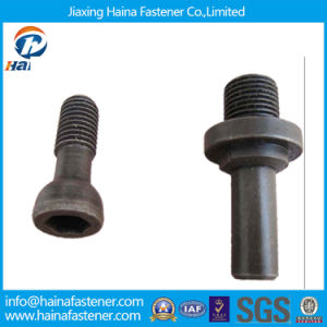 Non-Standard Bolt for Customized (Special Fastener) pictures & photos