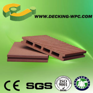 2015wood Plastic Composite Decking Export to Europe Everjade pictures & photos