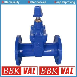 DIN3352 F5 Resilient Seated Gate Valve pictures & photos