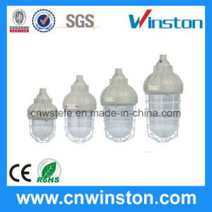Explosion Proof Lamp 220V Energy Saving (BAD82) pictures & photos