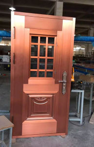 Tempered Reflective Glass Single Copper Door pictures & photos