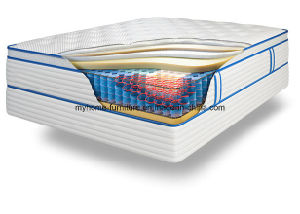 Coil Style and Steel Material 3 Zones Pocket Coil Spring Mattress