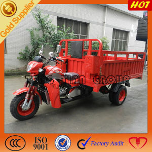 250cc China Three Wheel Cargo Motorcycle pictures & photos