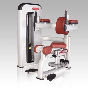 High Quality Rotary Torso Gym Equipment/Fitness Machine Bw-011 pictures & photos