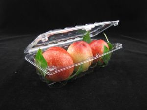 Hot Sale Blister Packaging Disposable Fruit Vegetable Tray pictures & photos