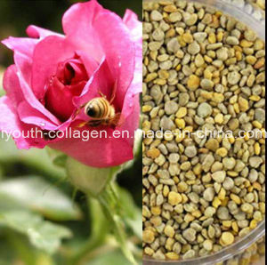 Top 100% Wild Rose Bee Pollen- Queen Pollen,No Antibiotics, No Heavy Metals, No Pathogenic Bacteria, Anticancer, Whitening, Anti-Aging,Prolong Life,Health Food pictures & photos