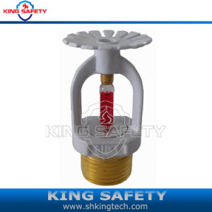 Fire Sprinkler Head White Painting pictures & photos