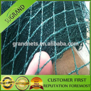 Extruded Plastic Anti Bird Netting pictures & photos