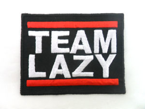Hot Selling Good Quality Patch Custom Embroidery pictures & photos