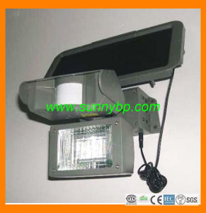PIR Solar Cell Flood Lighting pictures & photos