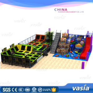 2016 Popular Large Trampolines Park for Kids by Vasia (VS6-160407-487A-31C) pictures & photos