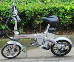 CE 14 Inch 48V Electric Folding Bike pictures & photos