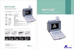 Digital Palmtop Vet Ultrasound Scanner pictures & photos