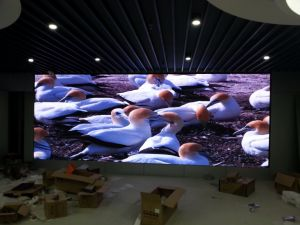 Indoor LED Display P2.5 for Fixed Installation pictures & photos