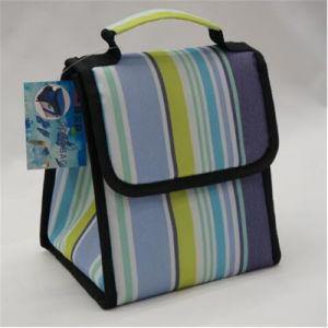 Ice Bag Lunch Bag Summer Cooler Bag Lunch Boxes (GB#355) pictures & photos