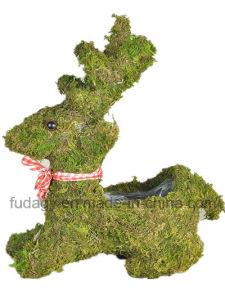 Animal Decorative Moss Nursery Pot pictures & photos