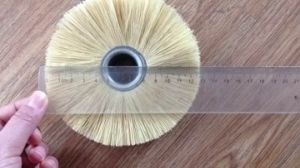 Sisal Sanding Paper and Palmyra Fiber Brush pictures & photos