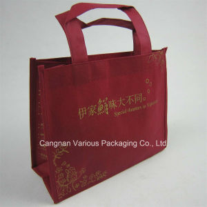 Non Woven Promotion Bag, Advertising Bag (BG1091) pictures & photos