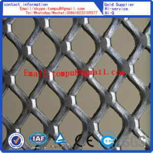 Ss Expanded Metal Ramp Mesh for Iron BBQ Grill pictures & photos
