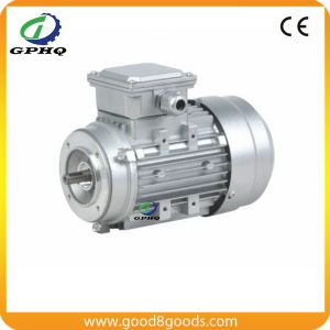 Zhejiang Electric Motor pictures & photos