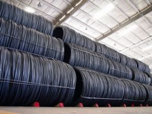 ASTM/AISI Standard Steel Wire Rod/Coil Rod pictures & photos