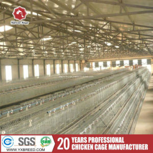Galvanized 3-Tier Egg Poultry Battery Cage pictures & photos